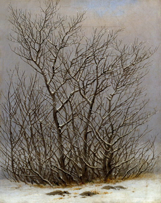 Friedrich / Bushes in snow /  c. 1827