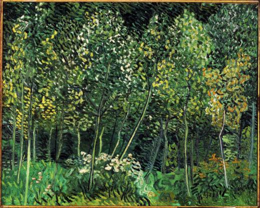 "Vincent van Gogh ""Waeldchen"" 73 x 92 cm 1"
