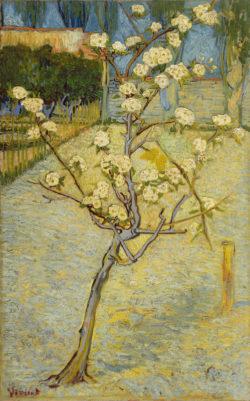 """Vincent van Gogh """"Birnenbaum in Bluete"""" 73 x 46 cm"""