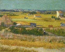 """Vincent van Gogh """"Die Ernte"""" 73 x 92 cm"""