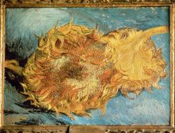 "Vincent van Gogh ""Zwei abgeschnittene Sonnenblumen"". 43,2 x 61 cm"