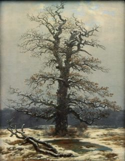 """Caspar David Friedrich """"Eiche im Schnee""""  34 x 44 cm"""