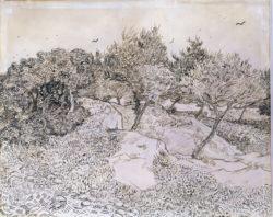 """Vincent van Gogh """"Oliviers à Montmajour"""" (Olivenhain bei Montmajour) 48 x 60 cm"""