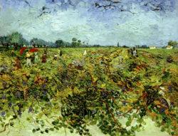 """Vincent van Gogh """"Der gruene Weingarten"""" 72 x 92 cm"""