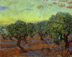 "Vincent van Gogh ""Olivenhain"" 74 x 93 cm"