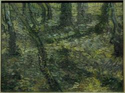 """Vincent van Gogh """"Unterholz mit Efeu"""" 47 x 64 cm"""