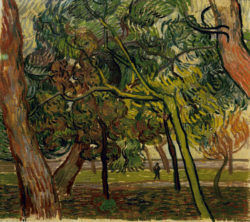 """Vincent van Gogh """"Studie mit Fichten im Herbst"""" (Pinien im Park) 46 x 51 cm"""