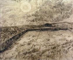 "Vincent van Gogh ""Felder und oelbaeume"", 47,4 x 56,5 cm"