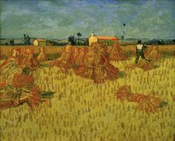 """Vincent van Gogh """"Ernte in der Provence"""" 51 x 60 cm"""