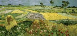 """Vincent van Gogh """"Die Ebene von Auvers"""" (Felder), 50 x 101 cm"""