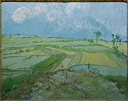 "Vincent van Gogh ""Weizenfelder in Auvers mit Regenwolken"" 73 x 92 cm"