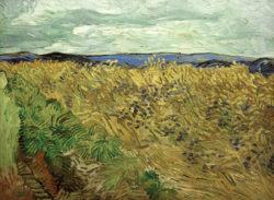 """Vincent van Gogh """"Feld 60 x 81 cm"""