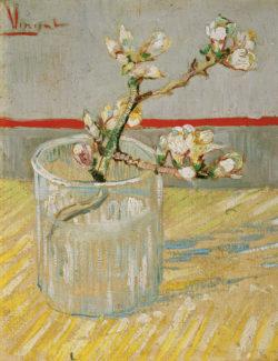 """Vincent van Gogh """"Bluehender Mandelbaumzweig in einem Glas"""" 24 x 19 cm"""