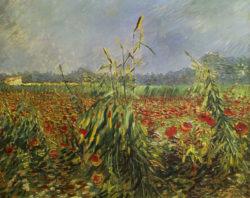 "Vincent van Gogh ""Gruene Kornhalme"" 54 x 65 cm"