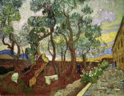 """Vincent van Gogh """"Garten des Hospitals Saint-Paul"""" (Der Irrenhausgarten von Saint-Rémy / Die großen Pinien), 73,1 x 92,6 cm"""