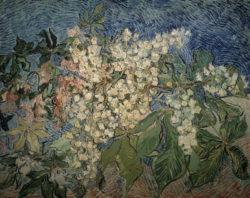 """Vincent van Gogh """"Bluehende Kastanienzweige"""", 72 x 91 cm"""