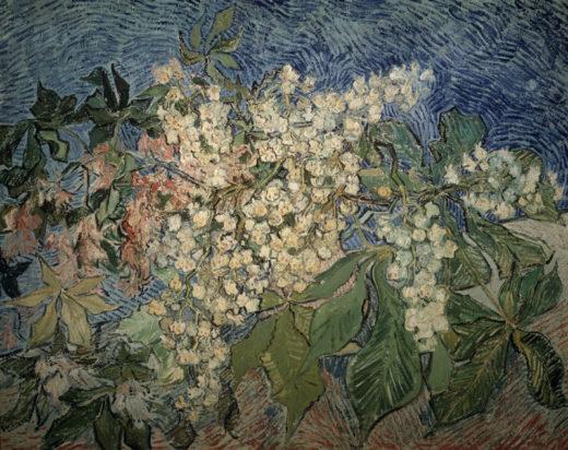 """Vincent van Gogh """"Bluehende Kastanienzweige"""", 72 x 91 cm 1"""