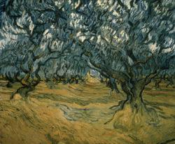 "Vincent van Gogh ""Olivenbaeume"", 53,5 x 64,5 cm"