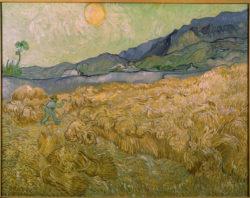 """Vincent van Gogh """"Weizenfeld mit Schnitter bei aufgehender Sonne"""" (Kornfeld 73 x 92 cm"""
