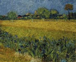 """Vincent van Gogh """"Blick auf Arles mit Irisblueten im Vordergrund"""" 54 x 65 cm"""