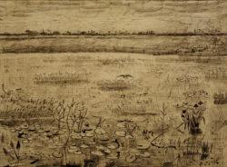 """Vincent van Gogh """"Sumpflandschaft mit Wasserlilien"""", 23,5 x 31,4 cm"""