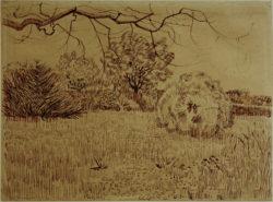 """Vincent van Gogh """"Park mit Strauch"""" 25,8 x 34,6 cm"""