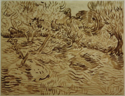 "Vincent van Gogh ""Olivenhain"" 49,8 x 64,9 cm"