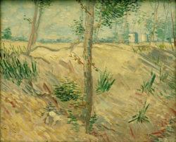 """Vincent van Gogh """"Baumstaemme im Sonnenlicht"""", 37,5 x 46 cm"""