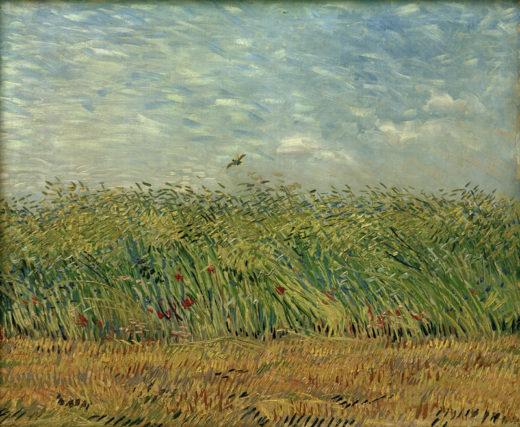 """Vincent van Gogh """"Getreidefeld mit Mohnblumen und Rebhuhn"""" 54 x 65,5 cm 1"""
