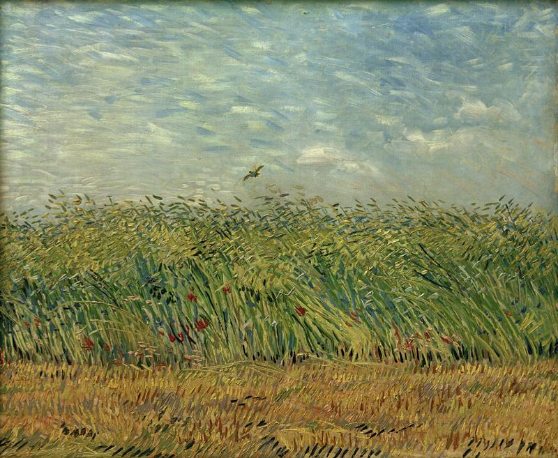 """Vincent van Gogh """"Getreidefeld mit Mohnblumen und Rebhuhn"""" 54 x 65,5 cm"""