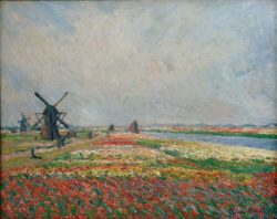 """Claude Monet """"Blumenfelder und Windmühlen bei Leiden"""" 81 x 65 cm"""