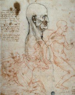 "Leonardo da Vinci ""Proportionsschema "" 22 x 28 cm"