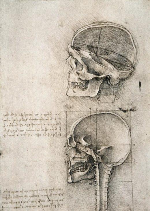 "Leonardo da Vinci ""Anatomiestudie"" 134 x 188 cm 1"
