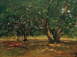 """Claude Monet """"Wald vonFontainebleau"""" 65 x 50 cm"""