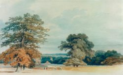 "William Turner ""Landschaft in Kent"" 22 x 36 cm"