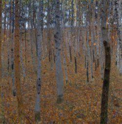 """Gustav Klimt """"Buchenwald I"""" 100 x 100 cm"""